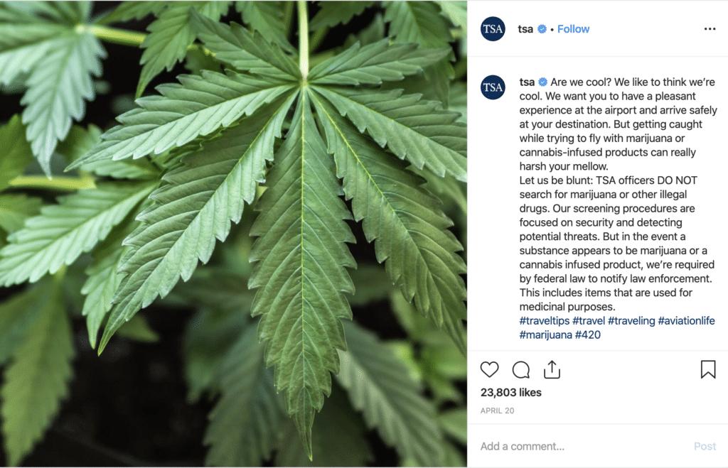TSA Marijuana