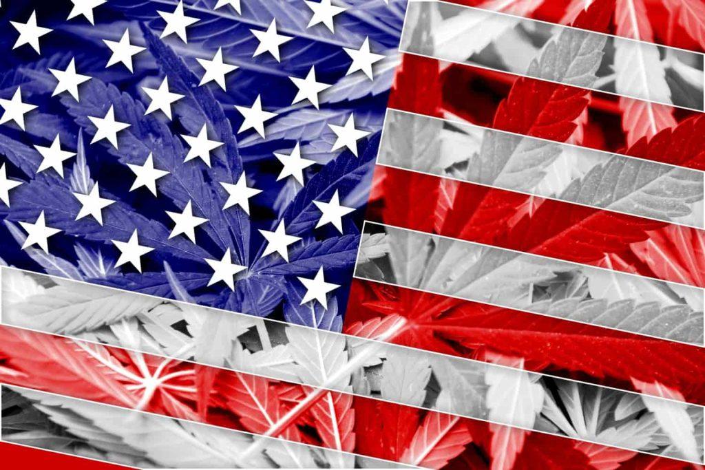 2020 Presidential Candidates: Marijuana Positions