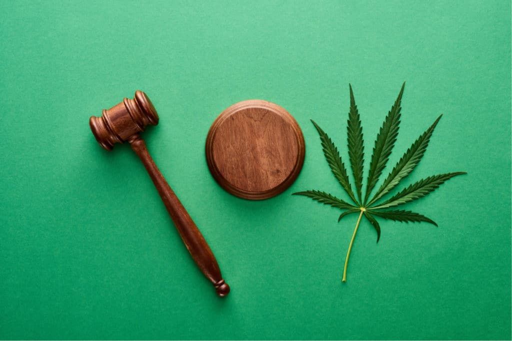 Every Florida Medical Marijuana Law You Need to Know