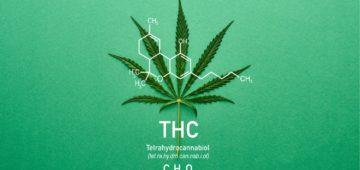 Microdose THC