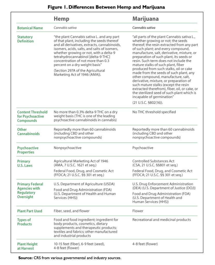 Hemp Marijuana Differences